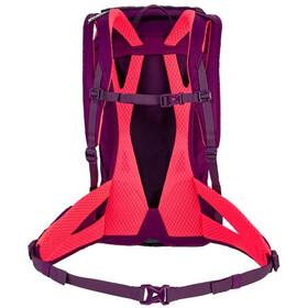 SALEWA Alp Trainer 20 Backpack Women dark purple